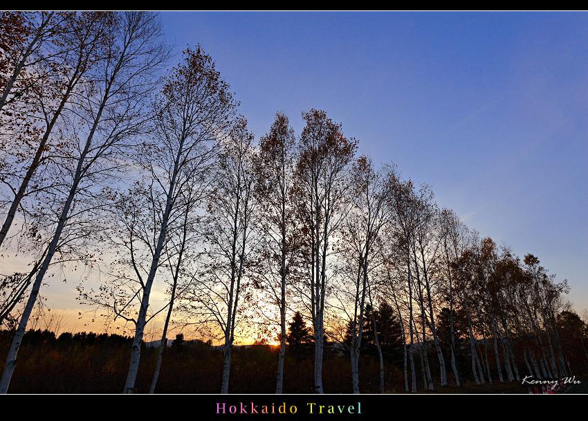hok-fl26.jpg