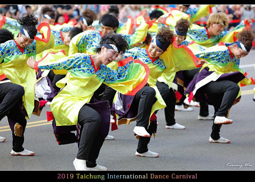danceca101.jpg
