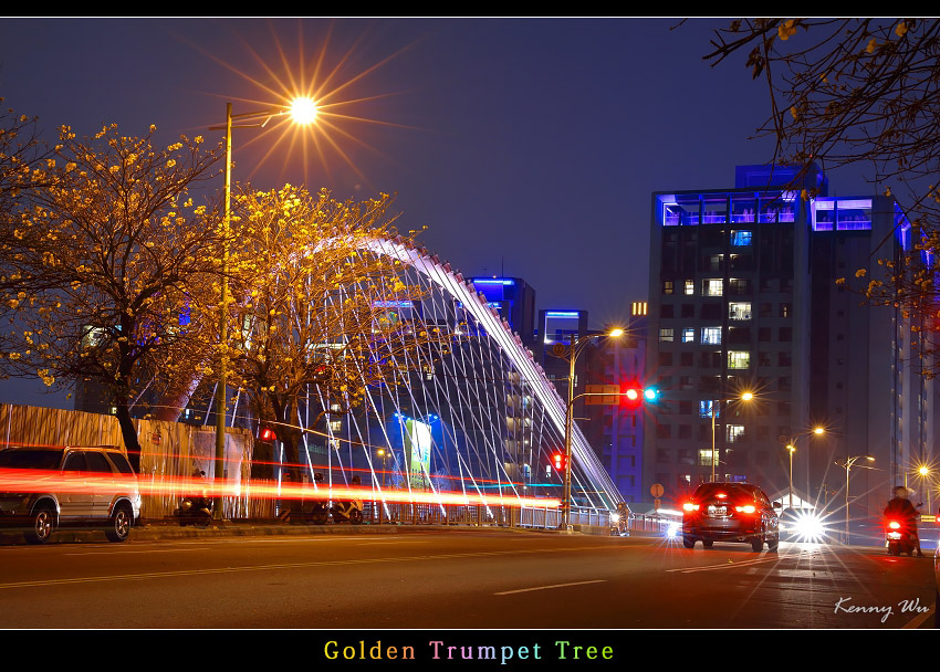 goldtr62.jpg