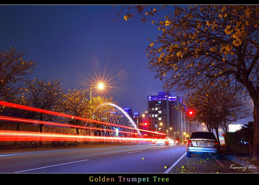goldtr64.jpg