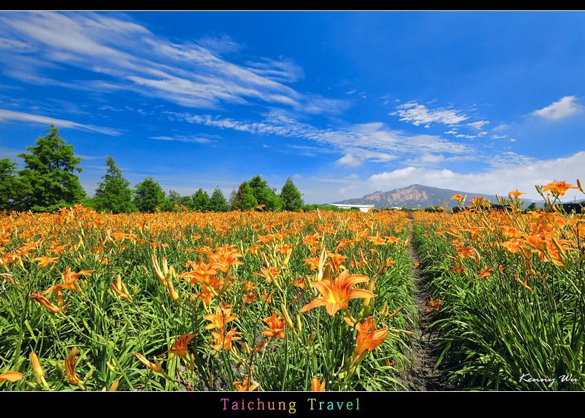 flowerjs21.jpg