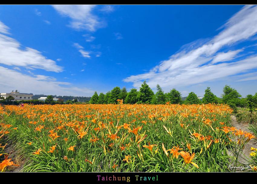 flowerjs30.jpg