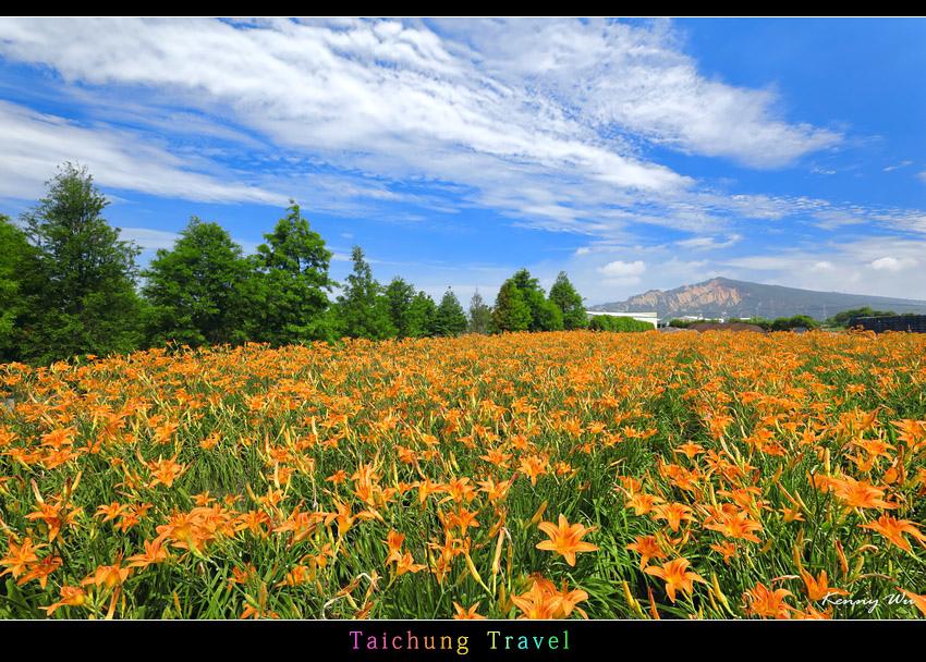 flowerjs32.jpg