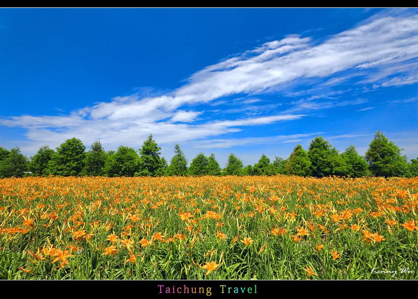 flowerjs29.jpg