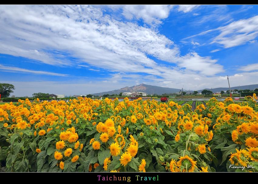 flowerjs36.jpg