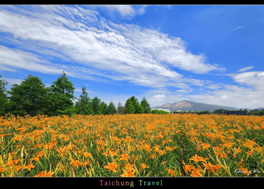 flowerjs34.jpg