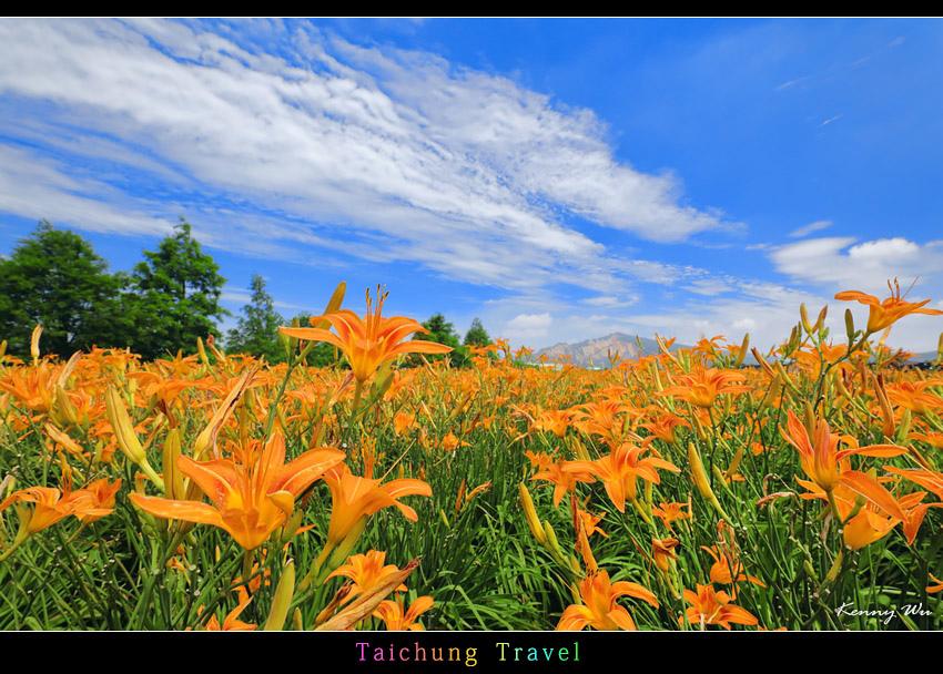 flowerjs33.jpg