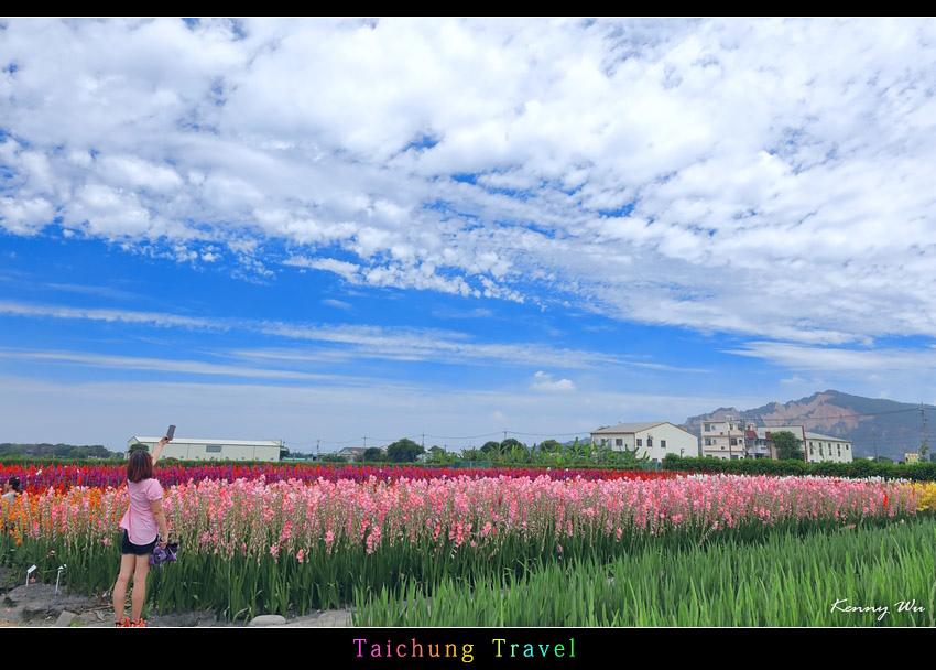 flowerjs46.jpg