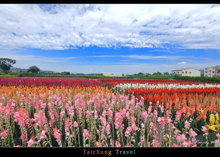 flowerjs44.jpg