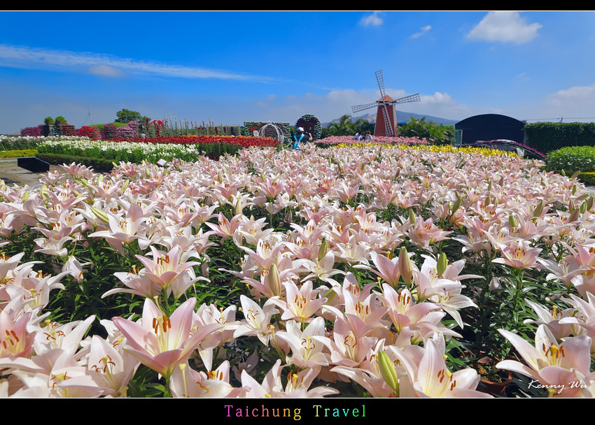 flowerjs02.jpg
