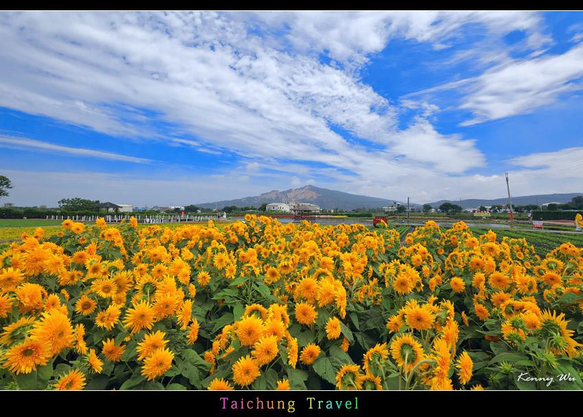 flowerjs01.jpg