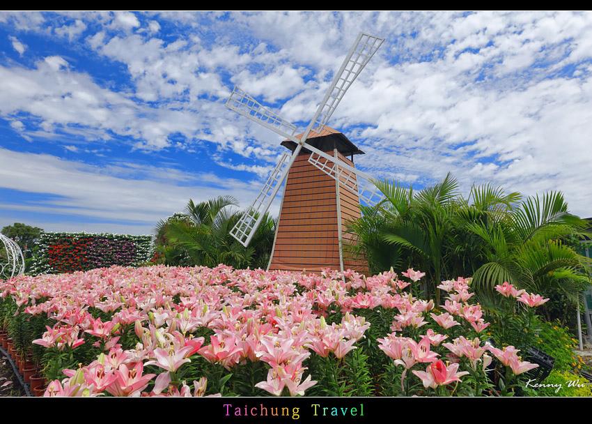 flowerjs13.jpg