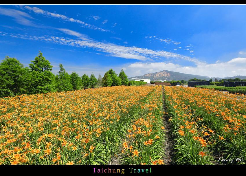 flowerjs12.jpg