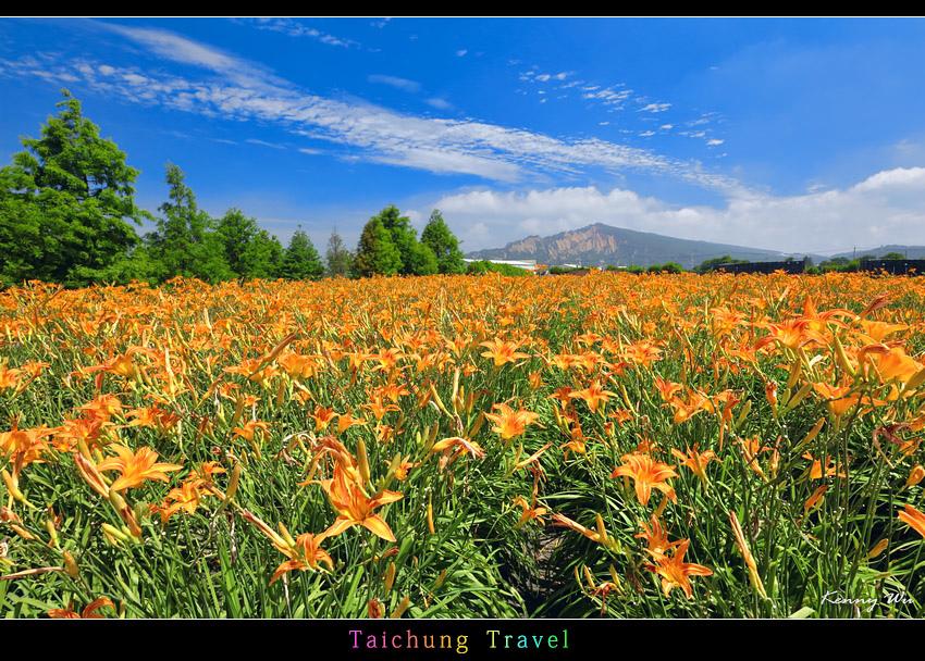 flowerjs15.jpg