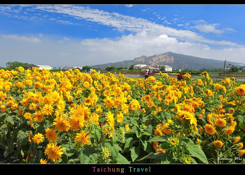 flowerjs16.jpg