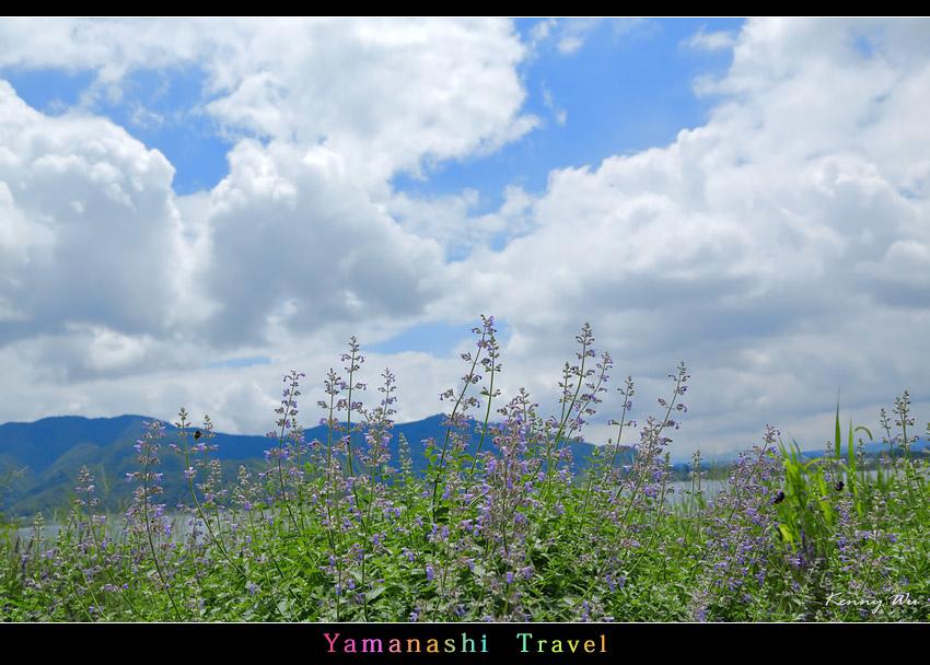 ooishika32.jpg