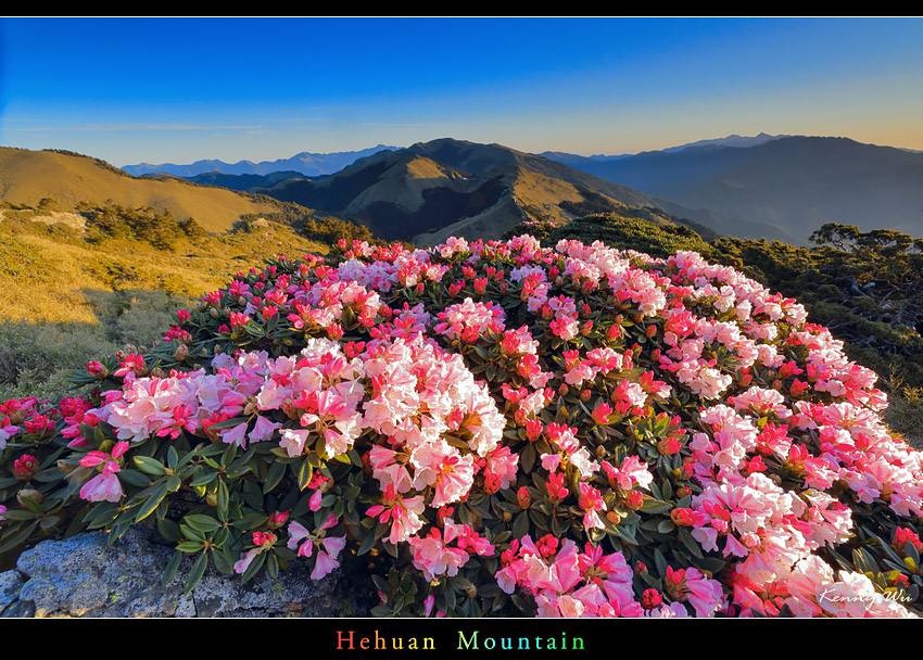 hehuea32.jpg