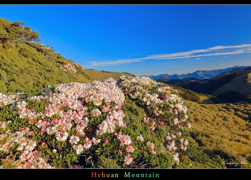 hehuea35.jpg