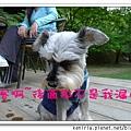 nEO_IMG_P1020222.jpg