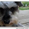 nEO_IMG_P1020226.jpg