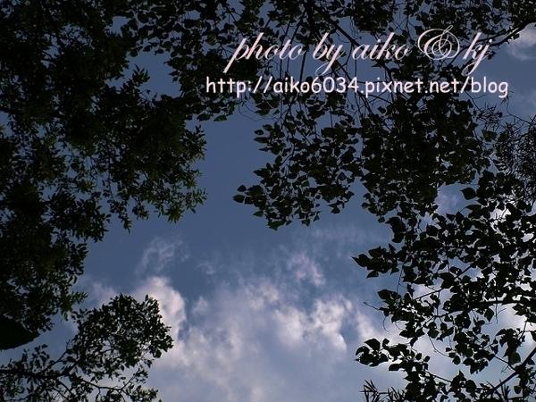 nEO_IMG_nEO_IMG_P5218262.jpg