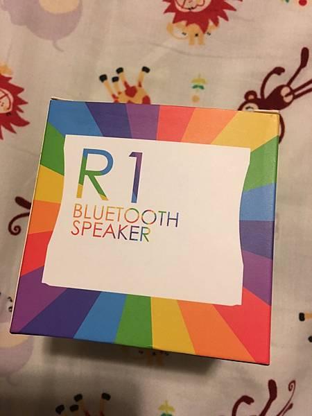 RainbowR1 (9).jpg
