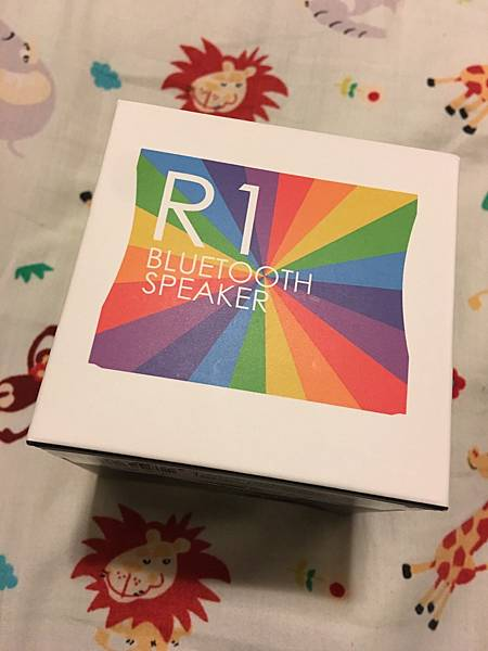 RainbowR1 (11).jpg