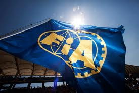 FIA旗幟.jpg