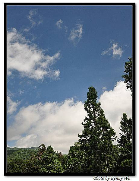DSC_3778-1.jpg