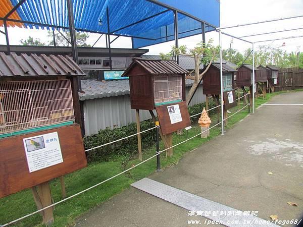 天空之城農場 35.JPG