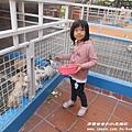 天空之城農場 36.JPG