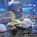 七星柴魚博物館 033.JPG
