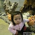 七星柴魚博物館 045.JPG