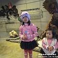 七星柴魚博物館 046.JPG