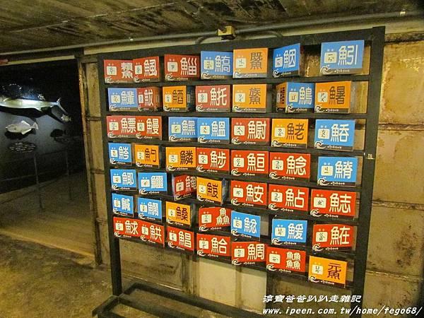 七星柴魚博物館 100.JPG