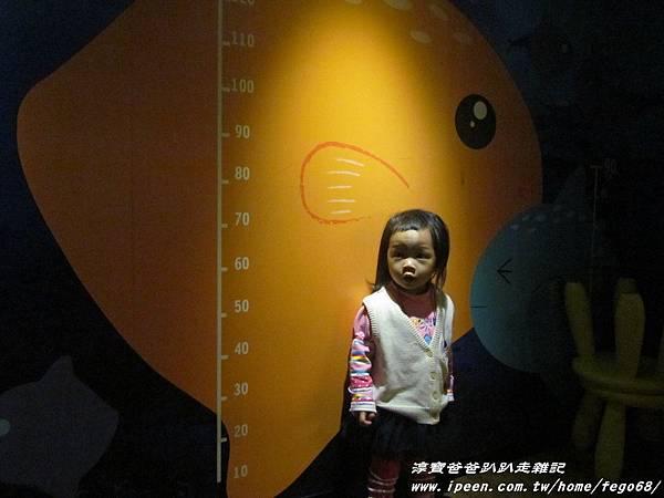 七星柴魚博物館 122.JPG