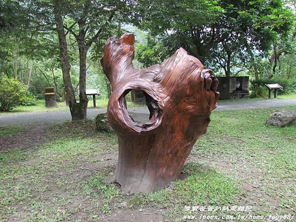 林田山林業文化園區 130.JPG