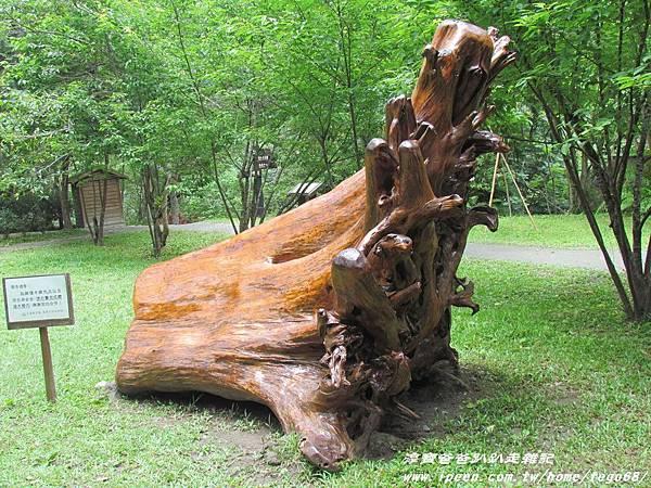 林田山林業文化園區 131.JPG