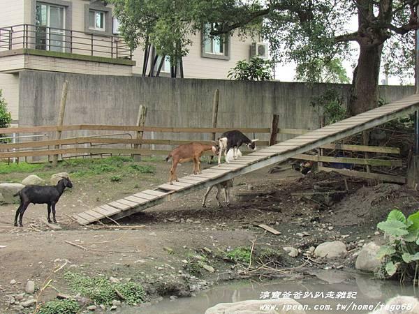 宜農牧羊場 19.JPG