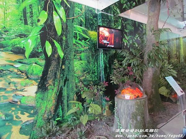 菌寶貝博物館 12.JPG