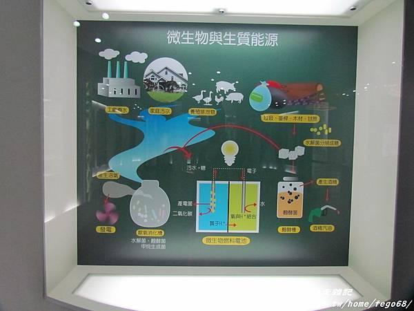 菌寶貝博物館 23.JPG