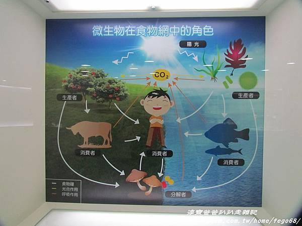 菌寶貝博物館 24.JPG