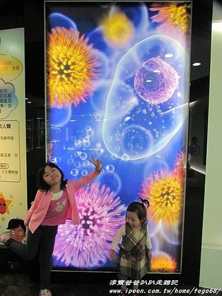 菌寶貝博物館 28.JPG
