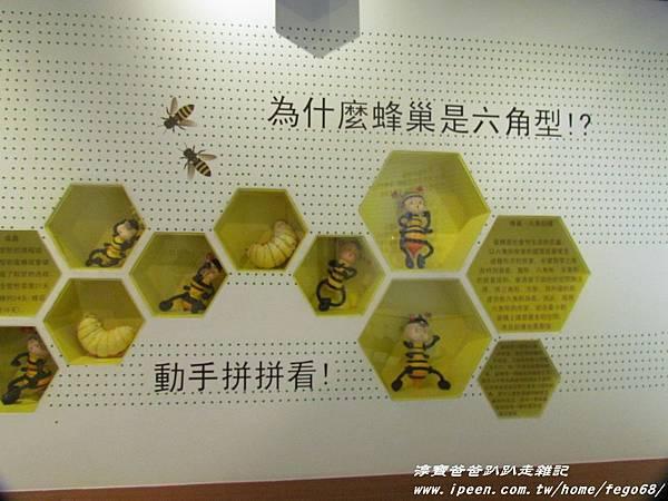 蜂采館養蜂人家 37.JPG