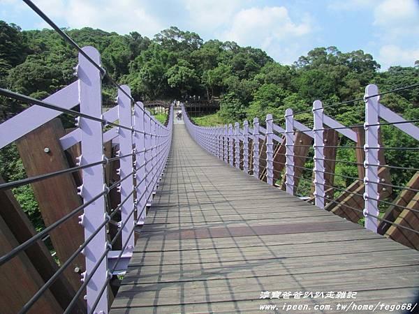 碧山嚴 白石湖吊橋13.JPG
