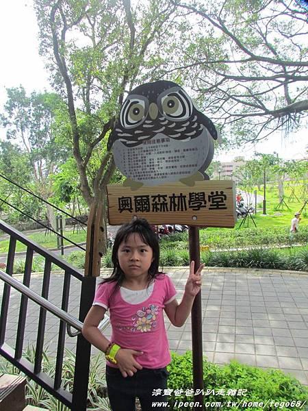 奧爾森林學堂(虎頭山公園)40.JPG