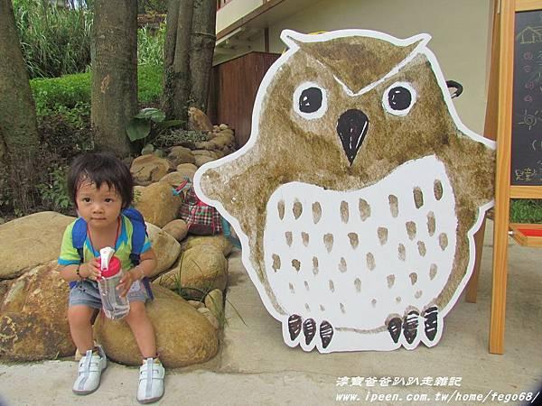 森林鳥花園31.JPG