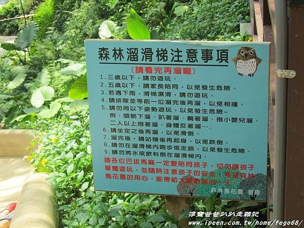 森林鳥花園41.JPG