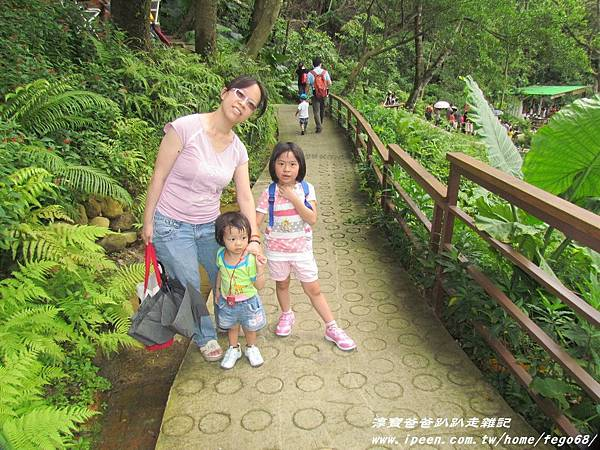 森林鳥花園48.JPG