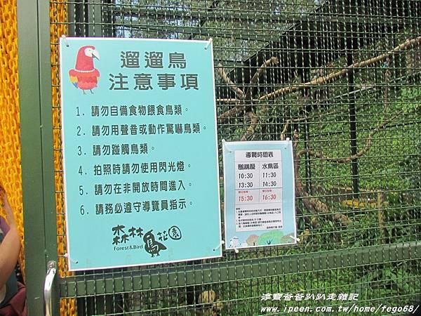 森林鳥花園52.JPG